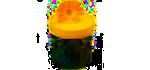 Bylinné masti, gely a oleje