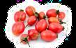 Oplodí (Pericarpium), Plod (Fructus)
