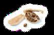 Semeno (Semen), Lusk (Follicum)