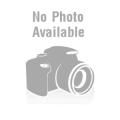 Korpus dortový bezlepkový světlý 140g
