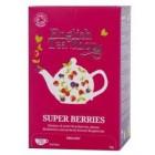 ETS: Super ovocný rooibos a červené ovoce BIO 20x1,5g