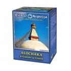 Everest Ayurveda: Bylinný čaj ALOCHAKA 100g