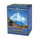 Everest Ayurveda: Bylinný čaj GOKSHURA 100g