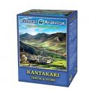 Everest Ayurveda: Bylinný čaj KANTAKARI 100g