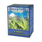 Everest Ayurveda: Bylinný čaj KARAVI 100g