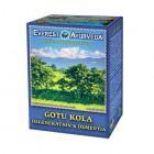 Everest Ayurveda: Bylinný čaj GOTU KOLA 100g