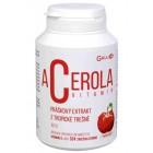 Acerola vitamin 100g