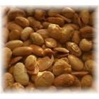 Alaburky sójové oříšky pražené 100g