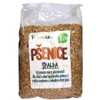 Pšenice špalda loupaná BIO 1kg